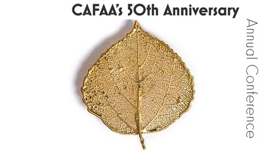 CAFAA Conference proposal